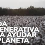 Moda regenerativa para ayudar al planeta
